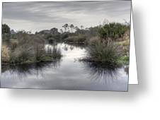 Moody Marsh Greeting Card