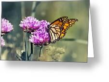 Moody Monarch Greeting Card