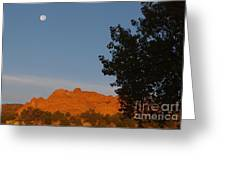 Moon Above Kissing Camels Greeting Card