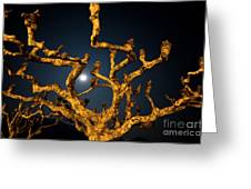 Moon Light And Tree Greeting Card