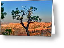 Moon Over Bryce Canyon Greeting Card