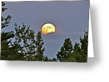 Moon Romance  Greeting Card