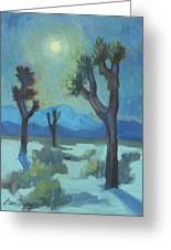 Moon Shadows At Joshua Greeting Card