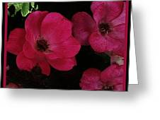Moonlight Roses Greeting Card