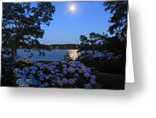 Moonlit Hydrangeas By The Se Greeting Card