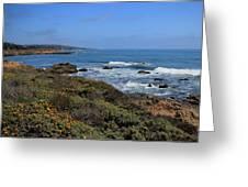 Moonstone Beach Greeting Card by Heidi Smith