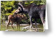 Moose Brunch Greeting Card