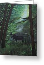 Moose In Pines Greeting Card