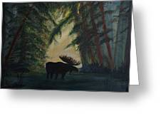 Moose Pond Hideout Greeting Card