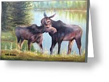 Moose Secrets Greeting Card