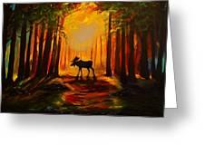 Moose Sunset Greeting Card