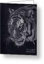 Moquito El Tigre Greeting Card