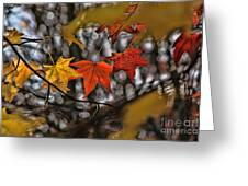 More Autumn Leaves Greeting Card