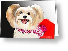 Morkie Valentine  Greeting Card