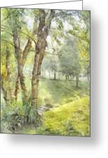Morning Birches Greeting Card