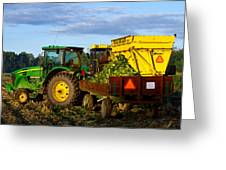 Morning Harvest Greeting Card by Tim Fitzwater