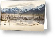 Morning Mist At Twenty Mile Greeting Card by Tim Grams
