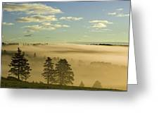Morning Mist Over Trees, New Glasgow Greeting Card