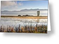 Morning Mists Of Cutler Marsh - Utah Greeting Card