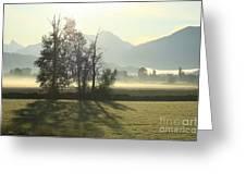 Morning Shadows Greeting Card