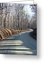 Morning Shadows On The Forest Road Greeting Card