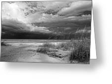 Morning Storm Greeting Card