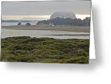 Morro Rock From The Elfin Forest Greeting Card