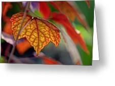 Mosaic Autumn Greeting Card