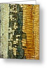 Mosaic Of Time Greeting Card