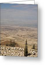 Moses First Saw The The Holy Land Greeting Card