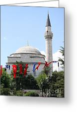 Mosque And Flags Greeting Card