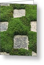 Moss And Stepping Stones Greeting Card