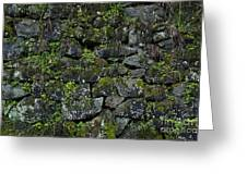 Moss And Stone Greeting Card