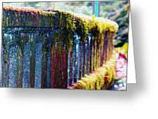 Moss Covered Bridge Greeting Card