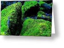 Moss In Blue Greeting Card