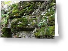 Moss N Rock Greeting Card