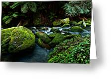 Moss Rocks Greeting Card