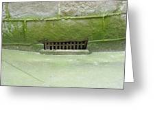 Mossy Grate Greeting Card