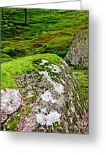 Mossy Rock Garden Greeting Card