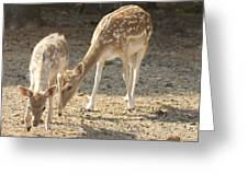 Mother And Child V2 Greeting Card