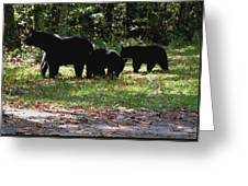 Mother Bear And Three Cubs Greeting Card