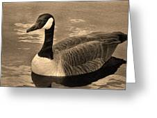 Mother Goose Greeting Card by Sergio Aguayo