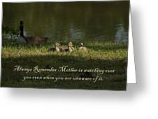 Mother's Watchful Eye Greeting Card by Kathy Clark