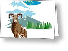 Mouflon Sheep Mountain Goat Greeting Card by Aloysius Patrimonio