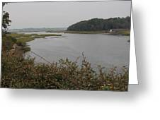 Moultrie Creek Greeting Card