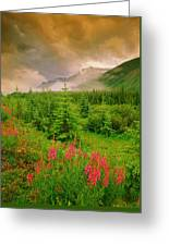 Mount Amery And Fireweed Greeting Card