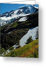 Mount Baker Floral Bouquet Greeting Card