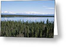 Mount Drum, Sanford And Wrangell Greeting Card