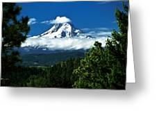 Mount Hood Framed By Trees, Oregon, Usa Greeting Card