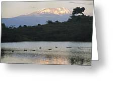 Mount Kilimanjaro Rises Above One Greeting Card